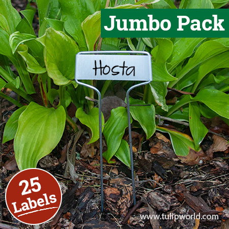 Cap Style Plant Labels Jumbo Pack