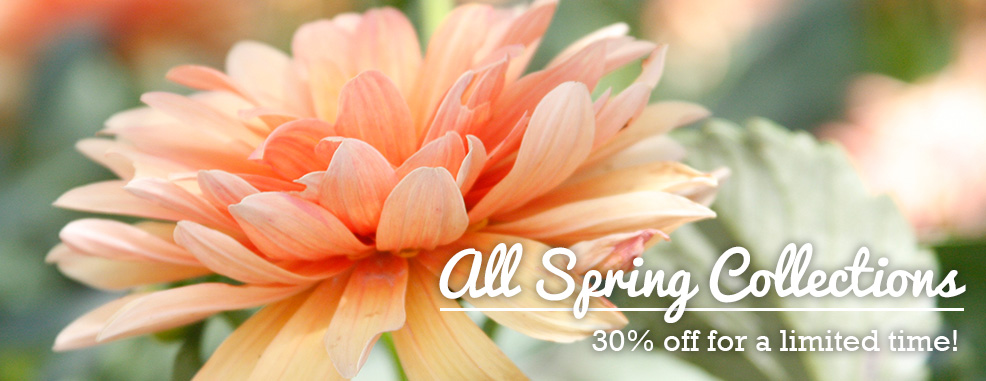 All Spring Collections Are 30% OFF!