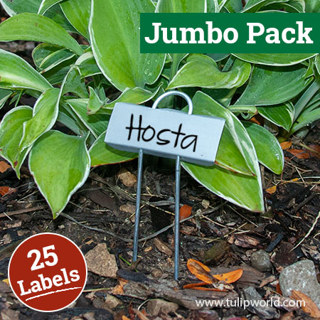 Miniature Plant Labels Jumbo Pack